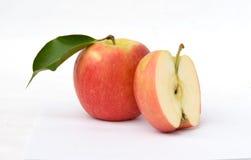 раздел красного цвета яблока Стоковое фото RF