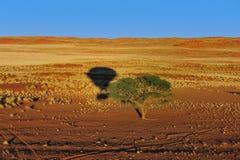 раздувая Намибия Стоковые Изображения RF