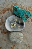 Раздумье камня и воды цветка стоковое изображение rf