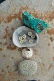 Раздумье камня и воды цветка стоковые фотографии rf