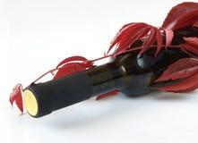 разлейте детенышей по бутылкам вина виноградины Стоковая Фотография RF