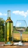 разлейте пустое стеклянное белое вино по бутылкам Стоковая Фотография