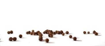 разленные семена кориандра стоковое изображение