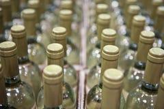 разливает белое вино по бутылкам Стоковая Фотография RF