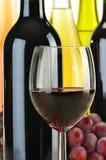 разливает вино по бутылкам вида состава различное Стоковые Фото