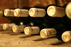 разливает вино по бутылкам погреба стоковое изображение