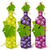 разливает лозу по бутылкам виноградины иллюстрация вектора