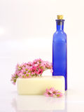 разливает необходимое мыло по бутылкам Стоковое Изображение RF