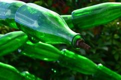 разливает стекло по бутылкам гирлянды шампанского Стоковые Изображения RF