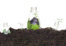 разливает экологическую пластмассу по бутылкам Стоковые Изображения