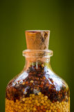 разлитые по бутылкам семена орнамента крупного плана Стоковая Фотография
