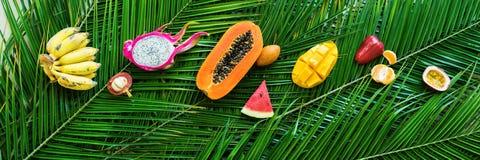 Различная концепция диеты еды тропических плодоовощей сырцовая Стоковая Фотография RF