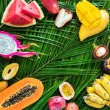 Различная концепция диеты еды тропических плодоовощей сырцовая Стоковое Изображение RF
