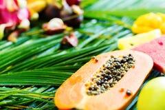 Различная концепция диеты еды тропических плодоовощей сырцовая Стоковое Фото