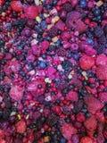 Различное очень вкусное, который замерли смешивание плодоовощей ягод стоковые изображения rf