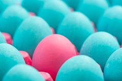 Различное схематическое изобразительное искусство яичек Стоковые Фотографии RF