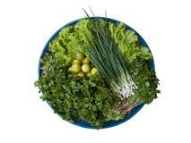 Различно зеленого овоща стоковое изображение