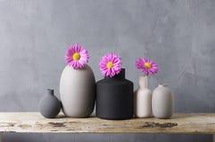Различные вазы с цветками на деревянной полке Стоковые Изображения