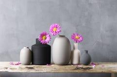 Различные вазы с цветками на деревянной полке Стоковые Фотографии RF