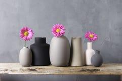 Различные вазы с цветками на деревянной полке Стоковое Фото
