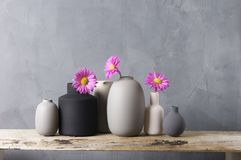 Различные вазы с цветками на деревянной полке Стоковое Изображение RF