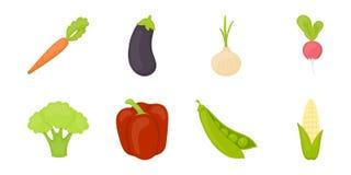 Различные виды значков овощей в собрании комплекта для дизайна Стоковое Фото