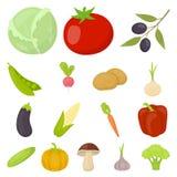 Различные виды значков шаржа овощей в собрании комплекта для дизайна Запас символа вектора овощей и витаминов Стоковая Фотография RF