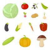 Различные виды значков шаржа овощей в собрании комплекта для дизайна Запас символа вектора овощей и витаминов Стоковые Изображения RF