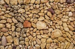 Различные виды камешков лежа на пляже стоковое изображение rf