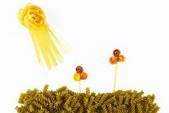 Различные виды покрашенных сырцовых итальянских макаронных изделий на белой предпосылке, взгляд сверху, в форме полей цветка и со Стоковое Фото