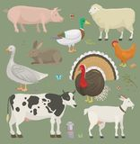 Различные животные и птицы вектора подсобного хозяйства как корова, овца, свинья, иллюстрация обрабатываемой земли утки установле иллюстрация штока