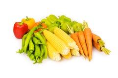Различные изолированные овощи Стоковое Изображение