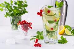 Различные коктеили лимонада или mojito ягоды, свежая замороженная известка лимона, красная смородина настояли вода, вытрезвитель  Стоковые Фото