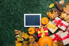 Различные листья осени и оранжевые тыквы приближают к классн классному Стоковое Фото