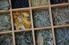 Различные листья чая в маленьких коробках сверху стоковое изображение rf