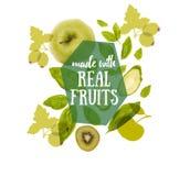 Различные органические зеленые фрукты и овощи стоковое фото