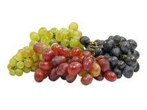 различные разнообразия виноградины Стоковая Фотография