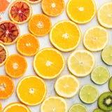 Различные разнообразия картины цитрусовых фруктов Стоковые Фото