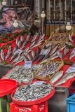 Различные рыбы на встречных рыбах ходят по магазинам в Стамбуле Стоковое фото RF