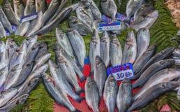 Различные рыбы на встречных рыбах ходят по магазинам в Стамбуле Стоковые Фотографии RF