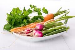 Различные свежие овощи на плите стоковые фотографии rf