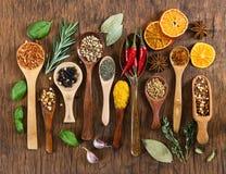 Различные специи в деревянных ложках Стоковое Изображение