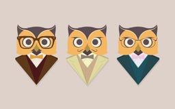Различные сычи в деловых костюмах и стеклах Стоковое Изображение