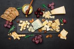 Различные типы сыра - бри, камамбера, рокфора и чеддера на бетоне Стоковое фото RF