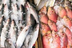 Различные типы сырых рыб показаны на таблице для продажи в рынке Смешивают с льдом для того чтобы сохранить рыбу свою свежесть Стоковые Фото
