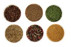Различные типы трав и специй на белой предпосылке стоковые фотографии rf