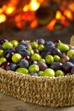 различный вид оливок Стоковые Изображения
