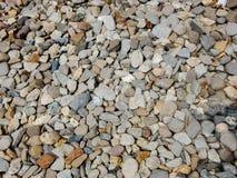 Различный определенный размер конец-вверх камешков с цветами Стоковая Фотография