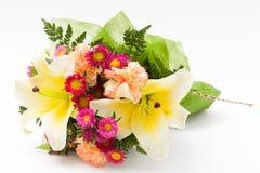 Различный цветок Стоковое Изображение RF