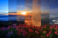 Различный цвет тени в таком же море рамки тумана на высокой горе Стоковое Фото